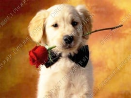 "Diamond painting ""Puppy with rose"""