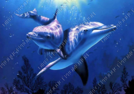 "Diamond painting ""Two dolphins"""
