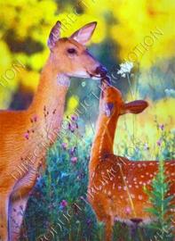 """Diamond painting """"Two deer"""""""