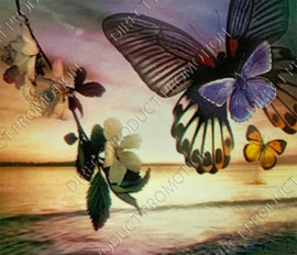 """Diamond painting """"Butterflies at the sea"""""""