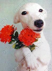 """Diamond painting """"Galgo puppy"""""""