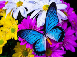"""Diamond painting """"Blue butterfly"""""""