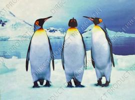 "Diamond Painting ""Emperor penguins"""