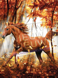 "Diamond Painting ""Brown horse in the fall"""