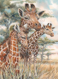 "Diamond painting ""Giraffe family"""