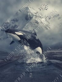 "Diamond painting ""Killer whale"""