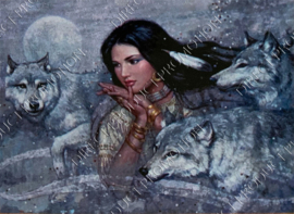 """Diamond painting """"Indian girl and wolves"""""""