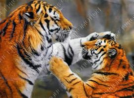 """Diamond painting """"Playing tigers"""""""