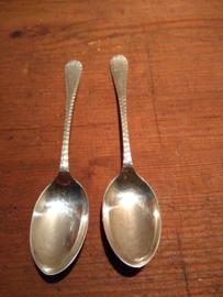 zilveren theelepeltjes