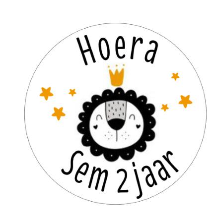 Sticker | Leeuw