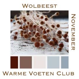 November - Fibre Club
