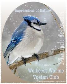 Maand februari - Impressions of Nature
