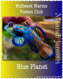Maand januari - Blue Planet