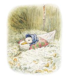 Projectas Beatrix Potter - Jemima Puddle-Duck