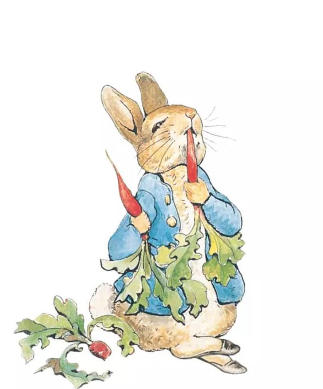 Februari - Pieter Konijn/Peter Rabbit