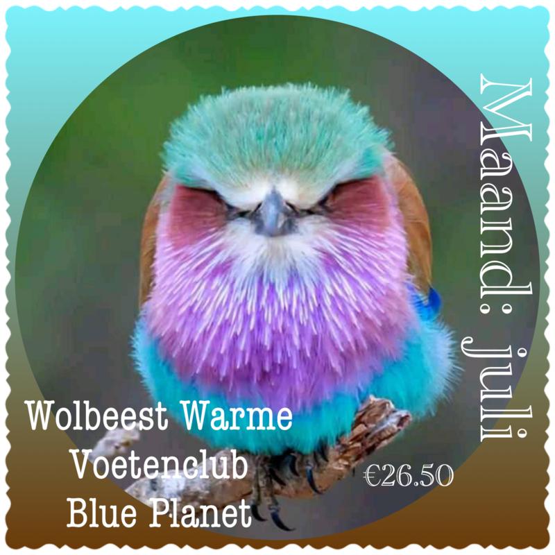 Maand Juli - Blue Planet