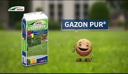 DCM meststof Gazon Pur 3kg tot 40m2