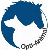 Online voedingsadvies voor uw paard