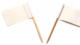 Vlagprikker wit (24 doosjes)