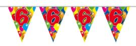 Vlaggenlijn - 6 jaar