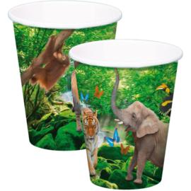 Safari- Bekers
