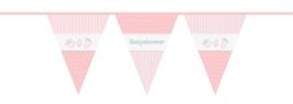 BS- Vlaglijn roze