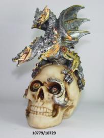10779-10729 Skull met draak