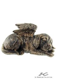 300741 urn hond