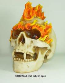 10782 Skull met opvallende hanenkam en verlichting