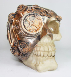 201838 Skull met loupe en licht