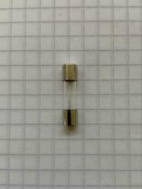 Glaszekering 6,3A traag 250V 5X20mm