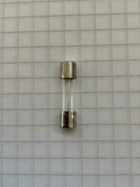 Glaszekering  250mAT 250v 5X20mm