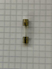 Glaszekering 2,5A traag 250V 5X22mm