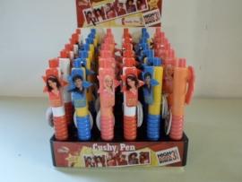 Disney's High school musical 3 cushy pennen prijs per display a 36 stuks