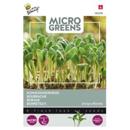 Microgreens Borage/Komkommerkruid