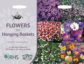 Collectie Hanging basket bloemen