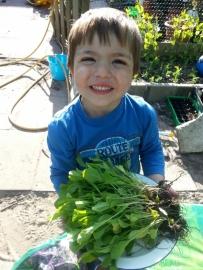 Goenten Zadenpakket voor Kinderen