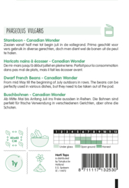 Kidneyboon Canadian Wonder