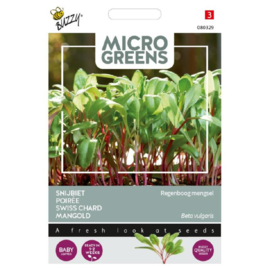 Microgreens Snijbiet Rainbow Mix