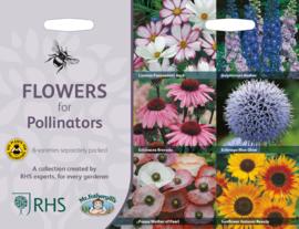 Collectie bijvriendelijke bloemen