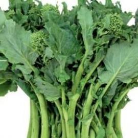 Broccoletto Quarantino Riccio