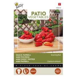 Paprika Snacking Red