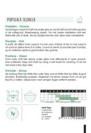 Groene Postelein