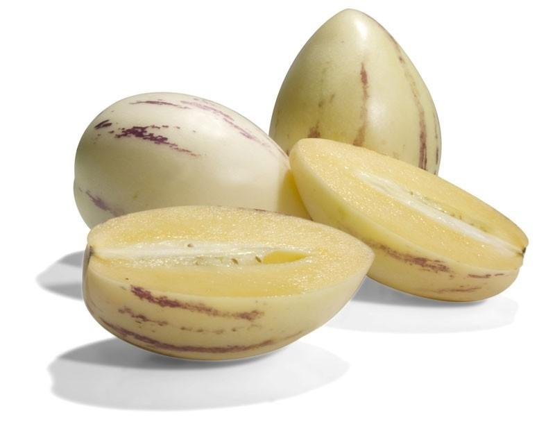 Meloenpeer Pepino Dulce (solanum muricatum)