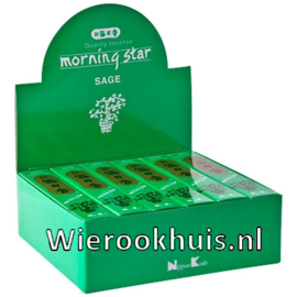Morning Star Wierook - Sage (Salie) - 50 stokjes
