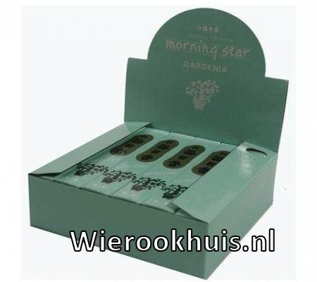 Morning Star Wierook - Gardenia - 50 stokjes