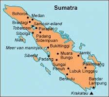 Sumatra Gayo Mountain biologische koffiebonen