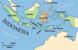 Sulawesi Kalosi koffiebonen