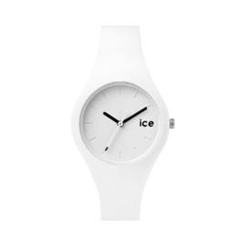 ICE.WE.S.S.14