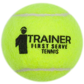 ARP Tennisball FST trainer pressureless (60pcs)
